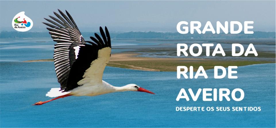 GRANDE ROTA DA RIA DE AVEIRO